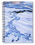 Ice Cube Creek Spiral Notebook