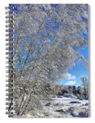 Ice Laden Birches Spiral Notebook