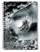Ice, Moonlight, Magic Spiral Notebook