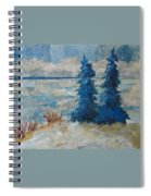 Ice On Lake Erie Spiral Notebook