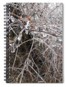Ice Pearls Spiral Notebook