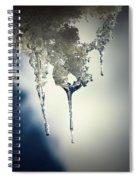 Ice Photo 4 Spiral Notebook