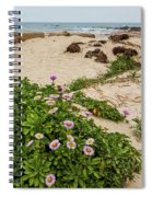 Ice Plant Booms On Pebble Beach Spiral Notebook