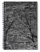 Ice Rain Spiral Notebook