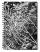 Ice Storm 2 - Bw Spiral Notebook