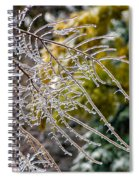 Ice Storm 2 Spiral Notebook