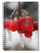 Ice Wrapped Berries Spiral Notebook