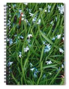Iceblue Squill Spiral Notebook