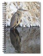 Iced Heron Spiral Notebook