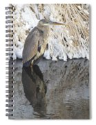 Iced Heron Spiral Notebook