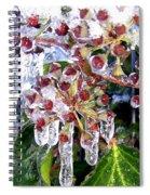 Iced Ivy Spiral Notebook