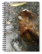 Iced Leaf Spiral Notebook