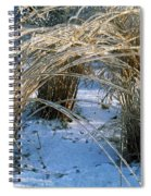 Iced Ornamental Grass Spiral Notebook