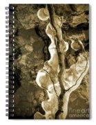 Iced Spiral Notebook