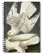 Iceland Or Jer Falcon Spiral Notebook