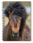 Icelandic Equine Beauty.. Spiral Notebook