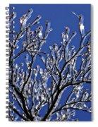 Icey Sparkle Spiral Notebook