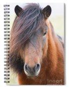 Iclelandic Horse Close Up Spiral Notebook