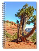 Iconic Southwest Spiral Notebook