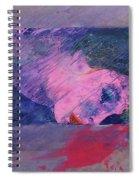 Iconoclasm 2 Spiral Notebook
