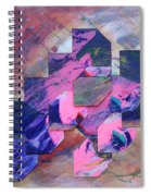 Iconoclasm 3 Spiral Notebook