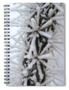 Icy Cactus Spiral Notebook