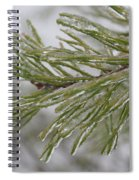 Icy Fingers Of The Pine Spiral Notebook