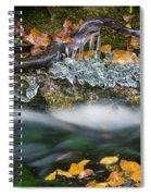Icy Foliage Stream Spiral Notebook