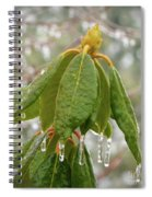 Icy Leaves Spiral Notebook
