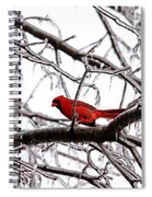 Icy Perch Spiral Notebook