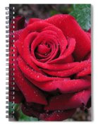 Icy Rose Spiral Notebook