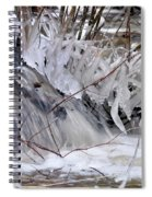 Icy Spring Spiral Notebook