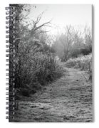 Icy Trail In Black And White Spiral Notebook