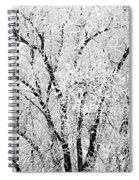 Icy Tree Spiral Notebook