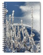 Icy World Spiral Notebook