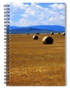 Idaho Hay Spiral Notebook