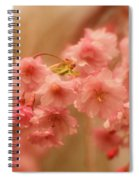 If Only For A Moment Spiral Notebook