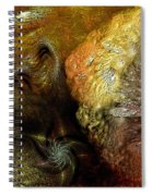 Igneous Spiral Notebook