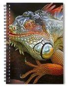 Iguana Full Of Color Spiral Notebook