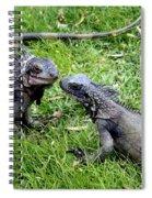 Iguana Kisses St Thomas Spiral Notebook