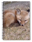 I'll Wait Here For Mom Spiral Notebook