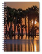 Illuminated Palm Trees Spiral Notebook