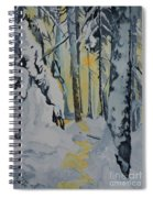 Illuminated Wilderness Spiral Notebook