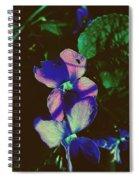 Illuminated Wildflowers Spiral Notebook