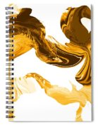 Illusions In Gold Spiral Notebook