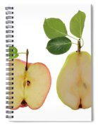 Illustration Of Apple And Pear Spiral Notebook