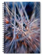 I'm Dreaming Spiral Notebook