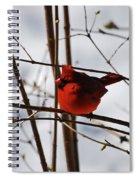 I'm Feeling Rather Red Today Spiral Notebook