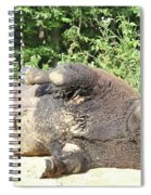 Give Me A Minute, I Know I Can Rollover Spiral Notebook