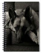 I'm Waiting For You Spiral Notebook